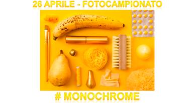 Fotocampionato: tema MONOCHROME